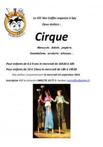 affiche cirque 2014